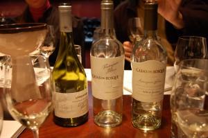 O Chile vem se destacando na produção de vinhos brancos, muito elegantes e que refletem com fidelidade o terroir local apropriado para o cultivo de cepas brancas