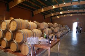 Degustação de vinhos no galpão das barricas