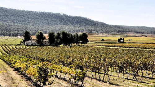 """Les Alcusses de Moixent, também conhecida como a """"Toscana"""" de Valencia"""
