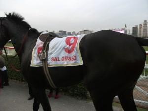 Sal Grosso: campeão do GP Brasil 2010